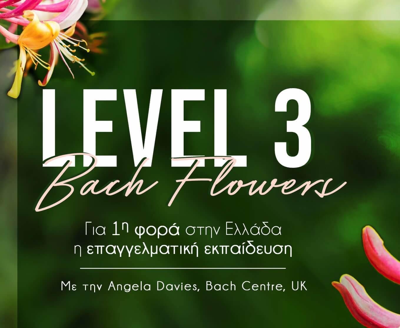 level 3 Σεμιναριο ανθοιαματα Μπαχ Bach seminar